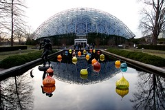 Chihuly Exhibit, Botanical Gardens, St. Louis by Laughing Easy