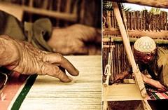 وقد أراني الشبابُ الرّوحَ في بَدَني  وَقد أراني المَشيبُ الرّوحَ في بَدَلي (| Rashid AlKuwari | Qatar) Tags: asian village traditional games 15th doha qatar راشد القرية التراثية الكواري alkuwari lkuwari