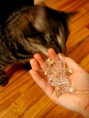 nemo bottles (graceewhite) Tags: lights miniatures nemo bottles kitties dollhouses 112scale roomboxes aubreymaturin catsandminiatures