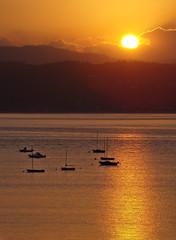 Galicia de oro V (-Merce-) Tags: espaa seascape sunrise catchycolors geotagged gold spain corua paisaje galicia amanecer seashore lanscape oro sada catchycolorsgold mmbmrs radebetanzos geo:lat=4336288305223425 geo:lon=8242157321438825 eligeetucolor