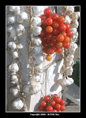 Nature (Max Perrini alias IK7TOE) Tags: italy tomato garlic 2008 instantfave flickrsbest mywinners abigfave ik7toe flickrcinated