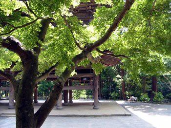 Cartes postales de Kamakura