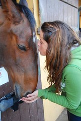 France e Hondax (A bout de Souffle Art) Tags: horses horse love girl animal kiss francesca cavallo animale tender bacio