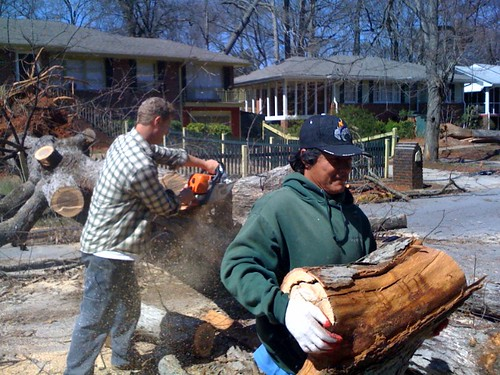 Timber wolf tree svc lent a hand for free