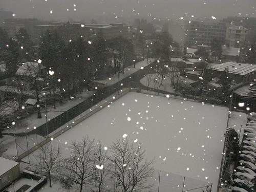 Coeur dans la neige
