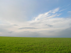 Ukraine Landscape Field Sky Clouds Grass Sun Ukraine Kiev (Seascape_) Tags: windows wallpaper sky sun field grass clouds skyscape landscape europe farm ukraine pole xp campo kiev ubuntu cloudscape acker ukraina greengrass ker ucrania ukrajina  windowswallpaper  ucraina akker  ukrayina  xpwallpaper windowsxpwallpaper april2008 njiva oekrane  ubuntuwallpaper linuxwallpaper fieldscape     sevirinovka kievskayaoblast