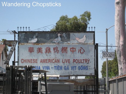 Chinese American Live Poultry 1