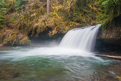 Upper Butte Creek Falls (paradeegary) Tags: scottsmills oregon unitedstates us