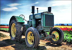 """Nothing runs like a Deere."" (TLPhotography66 ~) Tags: flowers shadow cloud sunlight flower nature colors sunshine clouds spring nikon shadows tulips tulip woodenshoe hdr johndeere d60 peddles hss woodenshoetulipfestival sunshadows woodburnoregon scarletsunday happyscarletsunday tlphotography"
