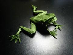 frog12 (paulmayor com) Tags: origami paperfolding exremeorigami