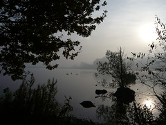 Misty Morning at Clumber (Stephen Ostler) Tags: nationaltrust clumberpark