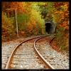 Nel Cuore della Montagna (cinquecentoquattordici) Tags: autumn italy fall forest d50 nikon railway tunnel nikond50 calabria sila cosenza nikkor18200mmvrii