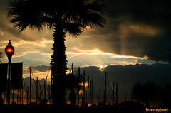 Unforgetable Sunset (born19june) Tags: trees light sunset orange sun boats houston boardwalk rays kemah born19june naturewatcher