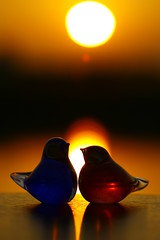 Fortunate Couple ( Spice (^_^)) Tags: camera pink blue sunset sky orange sun sunlight mountains color colour love nature water beautiful silhouette yellow j
