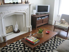 Rug in the Living Room, New Rug in the Living Room, Top Rug in the Living Room