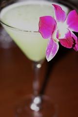 Ninja pucker martini