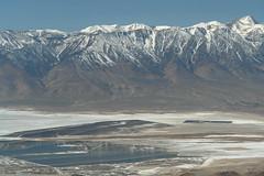 Owens Lake and Sierra