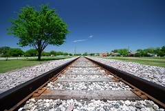 Converge (Steve Webel) Tags: railroad blue sky usa tree vanishingpoint nikon texas angle wide perspective palmer sigma1020 webel 1500v60f d80 top20texas