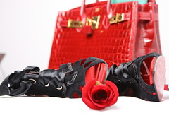 In her kindness and the taste (do7aat) Tags: red flower rose shoes crocodile hermes dolceandgabana