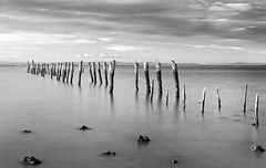 Tenby Point Jetty Black and White B&W (laurie.g.w) Tags: tenbypoint blackandwhite bw sunset westernport western port bay basscoast victoria australia shoreline jetty water cloud sky
