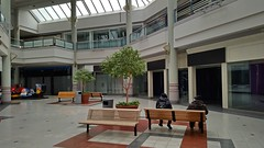 Landmark Mall, Alexandria, Virginia (SchuminWeb) Tags: schuminweb ben schumin web january 2017 alexandria virginia va landmark mall landmarkmall dead malls deadmall stores closed closing permanently redevelopment final days week empty vacant shopping retail retailers retailer retailing store shops shop bench benches trees tree rides coin operated storefront front fronts storefronts skylight skylights sky light lights