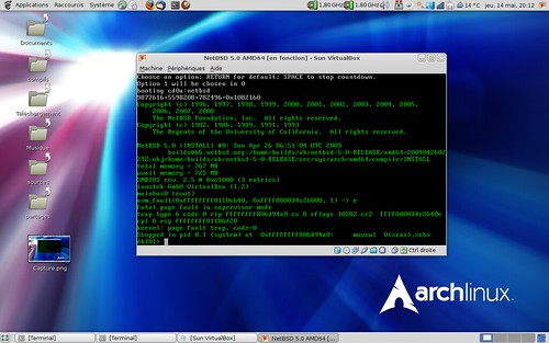 plantage de NetBSD 5.0 dans VirtualBox