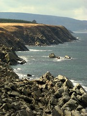 Cabot Trail south of Cheticamp (Nancy Rose) Tags: ocean sea cliff coast rocks novascotia capebreton cabottrail flickrdiamond ysplix bicul perfectphotographer
