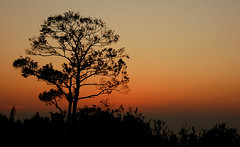 Saikazaki, Wakayama 3 (.:Oriental _ Spaghetti:.) Tags: sunset japan grande dal fabio giappone wakayama naturesfinest saikazaki