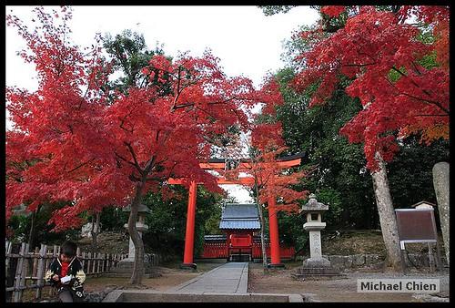 嵐山_20071124_152446_(8947)