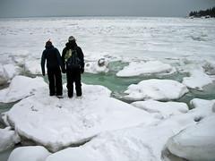 penguins Simon & Caroline (lise la cerise) Tags: winter friends white snow ice water eau hiver stlaurent parc bic rimouski fleuve banquise