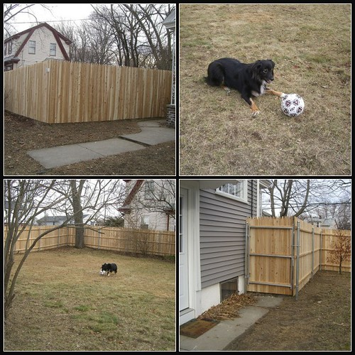 Murph's New Fence