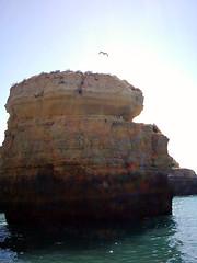 291 Acantilados y grutas de El Algarve 19 (Als) Tags: portugal elalgarve vacacionestaviralugaresportugal