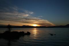 Rotorua  Lake sunrise (Heaven`s Gate (John)) Tags: newzealand sky lake color colour water silhouette sunrise rotorua dramatic peaceful calm northisland ripples johndalkin heavensgatejohn diamondclassphotographer flickrdiamond onlythebestare naturessilhouettes