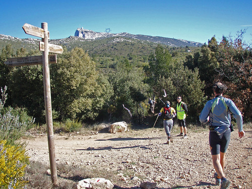 Trail_Sainte_Baume_2008 (198)