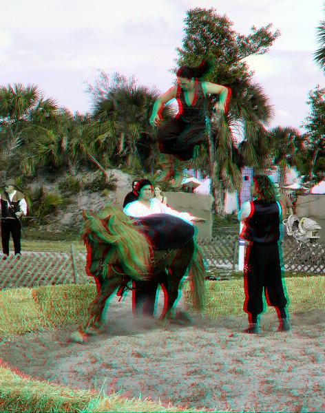Cavallo Equestrian Arts Jump Parallel 3d Cavallo