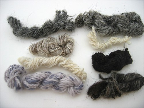 Rare Wool Breeds