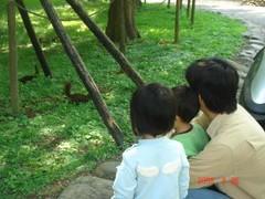 baby2008_0426_093003AA
