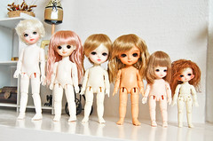 Tiny doll comparison - Explored - (Lola  Atelier Momoni +) Tags: doll mint bisou bjd dollfie lumi comparison fairyland bonbon abj
