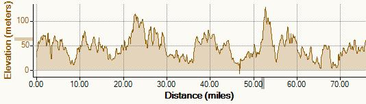 Elevation profile for the New Forest ride