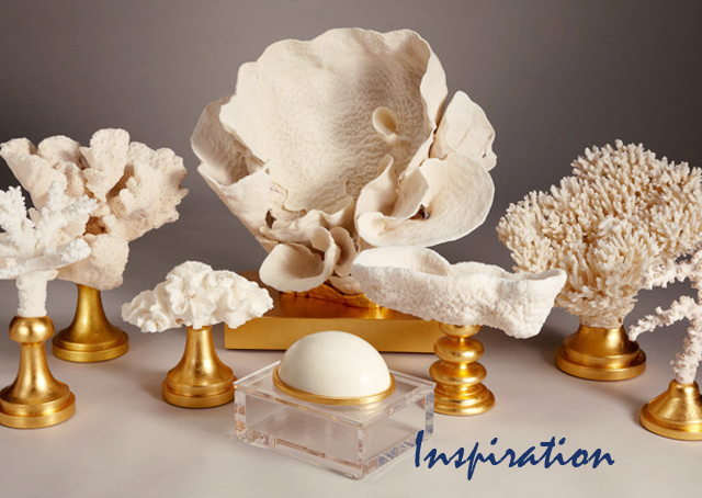 Eduardo Garza + coral decorative art sculptures inspiration