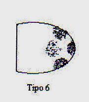 percutor tipo 6 copia