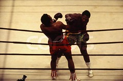 Joe Frazier Boxing Muhammed Ali.jpg (jotachito2003) Tags: newyorkcity 2 people usa men sports wearing photography clothing boxers barechested manhattan bare colorphotography fulllength arena northamerica africanamericans americans blacks males prominentpersons newyorkstate shorts athletes boxing adults madisonsquaregarden muhammadali sportsequipment midatlantic boxinggloves midadult midadultman activewear boxingshorts casualclothing partiallynude heavyweightboxer joefrazier