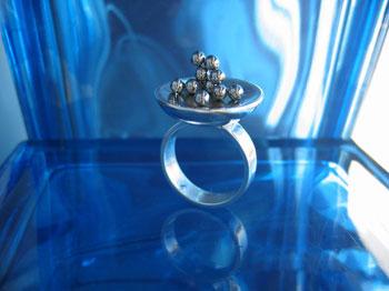 dish_magnet_ring
