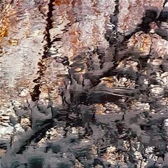 "In front of the adversity… the Light!!! / En face de l'adversité… la Lumière!!! (Denis Collette...!!!) Tags: winter light snow canada reflection tree angel oracle force quebec spirit lumière invisible hiver ange rivière reflet soul depression neige spiritual tao liberation arbre esprit sauvage spirituel adversity dépression ""deniscollette"" «wildriver» world100f «santaclaus» «pèrenoël» «64hexagrams» «iching» «64hexagrammes» «yiking» adversité explorewinnersoftheworld"