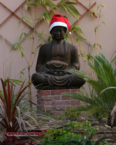Season's Greetings from Mahmood's Den and Mahmood's Garden