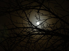 Its Dark downthere (rajesh_aussies) Tags: moon nature h9