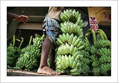 Fruit market (yanseiler) Tags: travel india canon market south madras backpack 5d canon5d chennai tamil tamilnadu independant nadu koyambedu nadou koyambedou