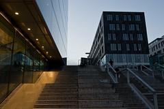 Stuggi's Famous Stairs