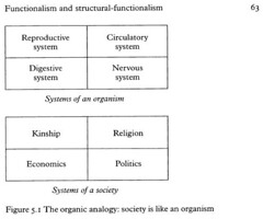 merton and luhman in sociology Definition of robert merton's latent and manifest functions, socio short notes, subject matter of sociology according to durkheim, cwright mills power elite, education and social change, social mobility in open and closed system, problems of objectivity in sociological research, sociology as science, comparison between sociology and economics.