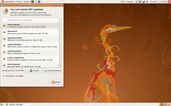 Ubuntu Hardy Heron updates